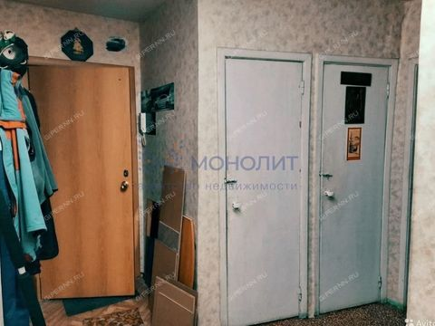 ul-radio-d-2 фото