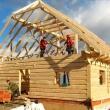 Можно ли построить дачный дом за лето?