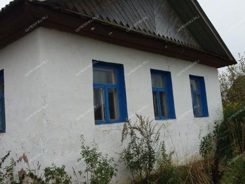 dom-derevnya-momzino-gorodskoy-okrug-shahunya фото