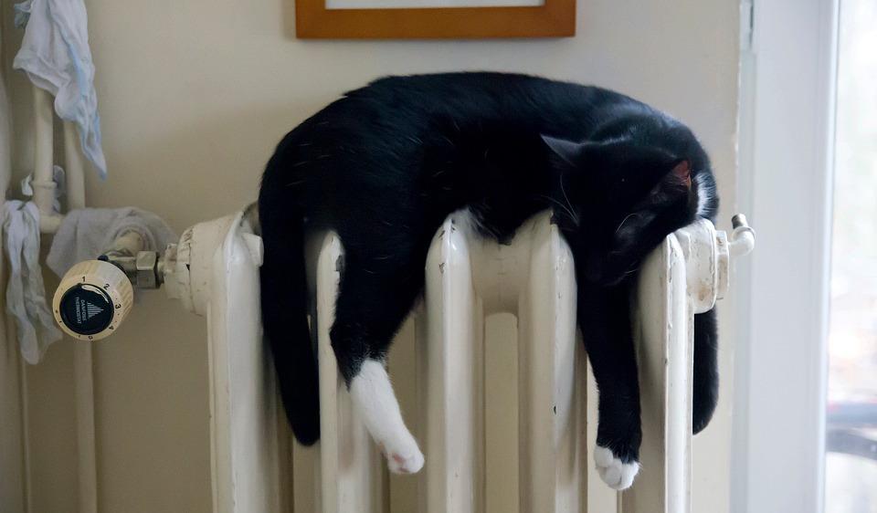 Что Минстрой предлагает сделать соплатой теплоснабжения