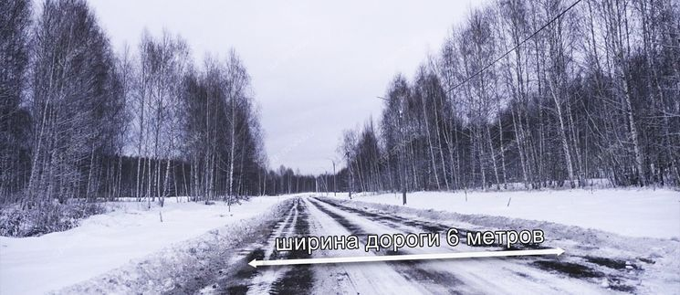 lesnoy-rodnik фото